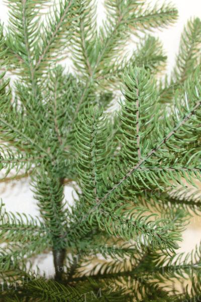 Світло зелена лита ялинка голки