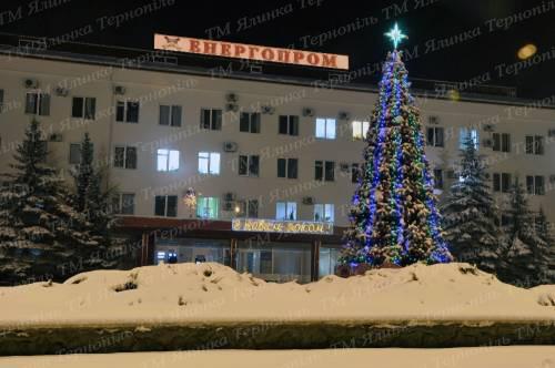 Новодністровськ ялинка
