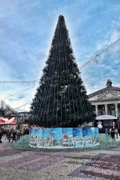 Ствольная елка в г.Тернополь