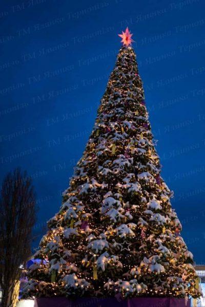 Киев ВДНХ 12 метровая ствольная елка
