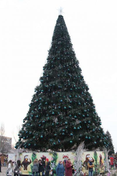 Ствольная елка 22 м г.Запорожжя